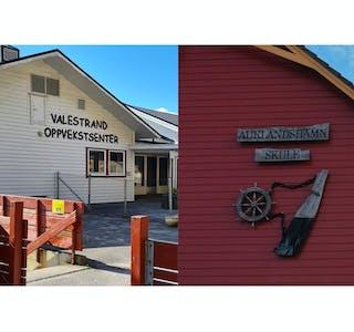 Utsnitt av Valestrand oppvekstsenter og Auklandshamn skule.