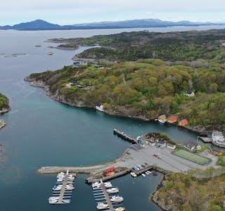 Dronefoto frå Buavåg, mai 2021.
