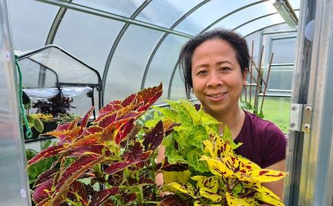 Maria var ivrig i hagen på Filippinene, ein del av plantene har ho i Noreg også, slik som coleus, eller praktspragle som mange kjenner den som. Det finst mange variantar av sorten, i drivhuset til hageelskaren i Førde finst det 35.