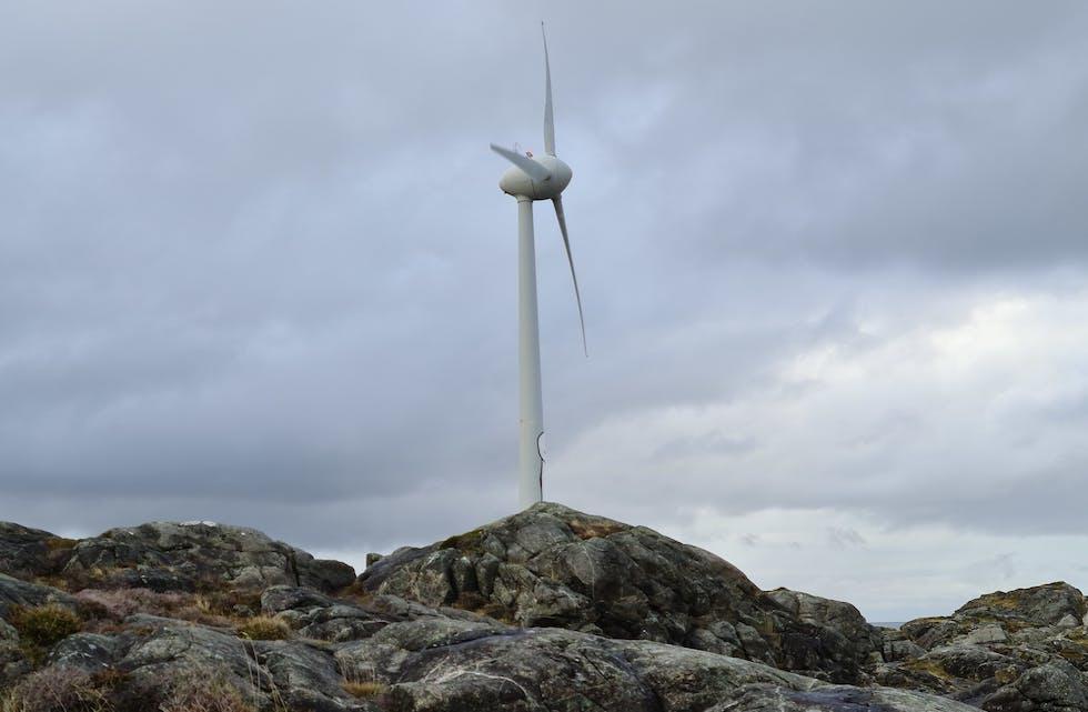 vindmøller vindkraft